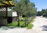 Agriturismo L'Uliveto